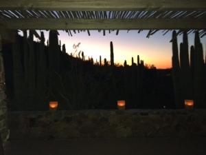The sun setting on the Arizona desert...and on 2013!
