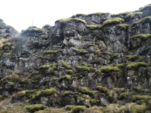 Also at Þingvellir, just a very cool wall of rocks and mossy stuff.